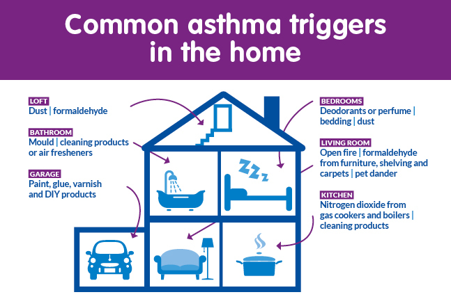 The Effects Of Cleaning Products On Asthma Sufferers And